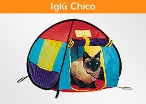 Iglú Chico